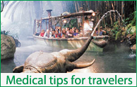 medical tips for travelers